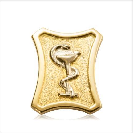 Botton de Formatura Ouro 18k 750
